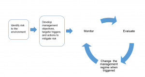Adaptive Management Process3